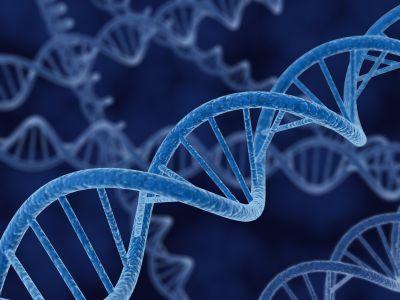 Un nou test de sânge ar putea să detecteze mai multe tipuri de cancer