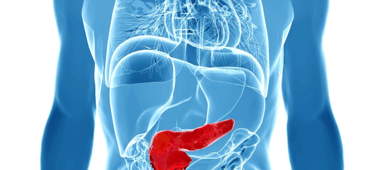 Cancerul pancreatic, eradicat într-un studiu realizat de animale de o echipă de cercetători din Israel