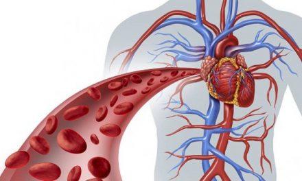 Bolile de inimă, mai periculoase pentru pacienții cu cancer – STUDIU