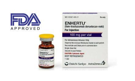 FDA aprobă trastuzumab deruxtecan pentru tratamentul cancerului de sân HER2-pozitiv avansat