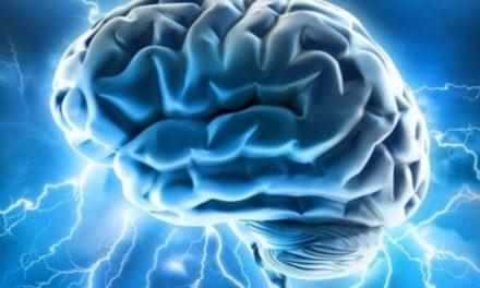 O echipă de cercetători americani a depășit cu succes bariera hematoencefalică pentru a trata tumorile cerebrale