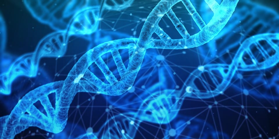 Metastaze, cancer: ce rol are moștenirea genetică