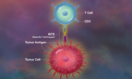 Tehnologia BiTE, o nouă dimensiune a imunoterapiei oncologice. Ce sunt anticorpii bispecifici și care este diferența față de terapia CAR-T?