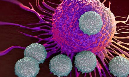 Primele rezultate ale celui mai mare studiu în domeniul cancerului
