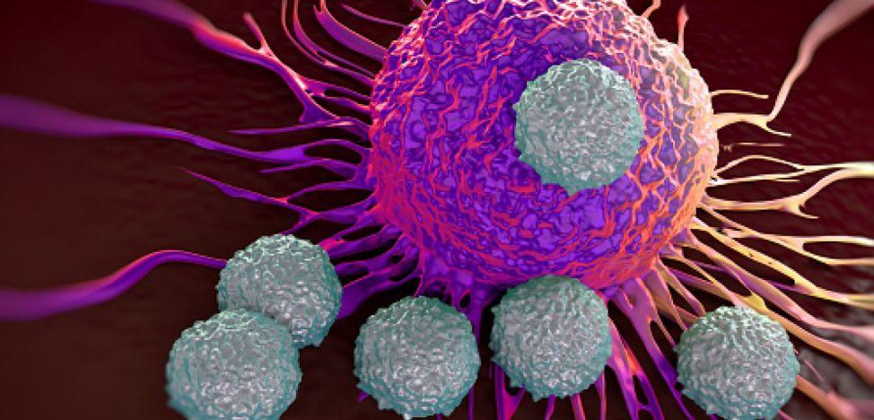 Descoperire: noi proteine țintă în terapia cancerului