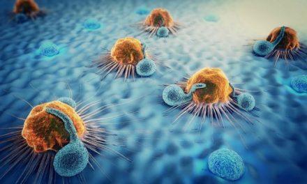 """Cercetătorii au dezvăluit alimentele care """"programează"""" sistemul imunitar să distrugă cancerul"""