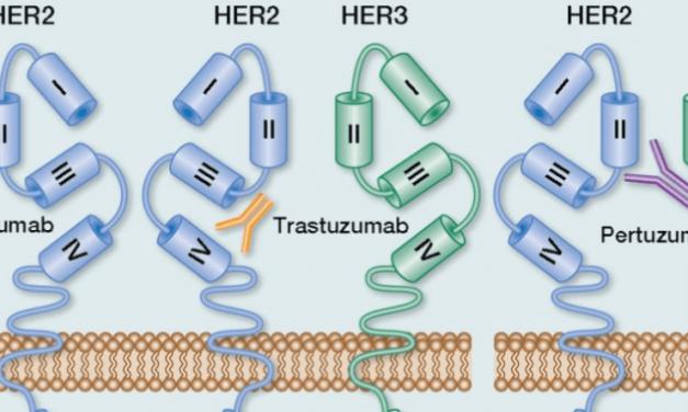 #GI20. Studiul TAPUR: terapiile țintite, eficiente în cancerul colorectal avansat, la pacienții care prezintă anomalii moleculare specifice