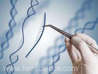 O nouă etapă în terapia genică, prin tehnica Crispr, împotriva cancerului (studiu)