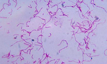 Semnăturile microbiene din sânge pot fi folosite pentru a detecta cancerul