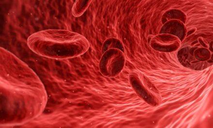 Un nou protocol de tratament pentru o formă rară de cancer de sânge a obținut rezultate pozitive într-un studiu clinic