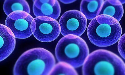 Un tratament experimental distruge celulele canceroase fără a folosi medicamente