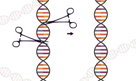 Tehnologia CRISPR poate fi folosită pentru a distruge cancerul