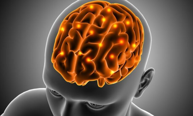 Un studiu prezintă modul de transport celular către cancerul de creier agresiv