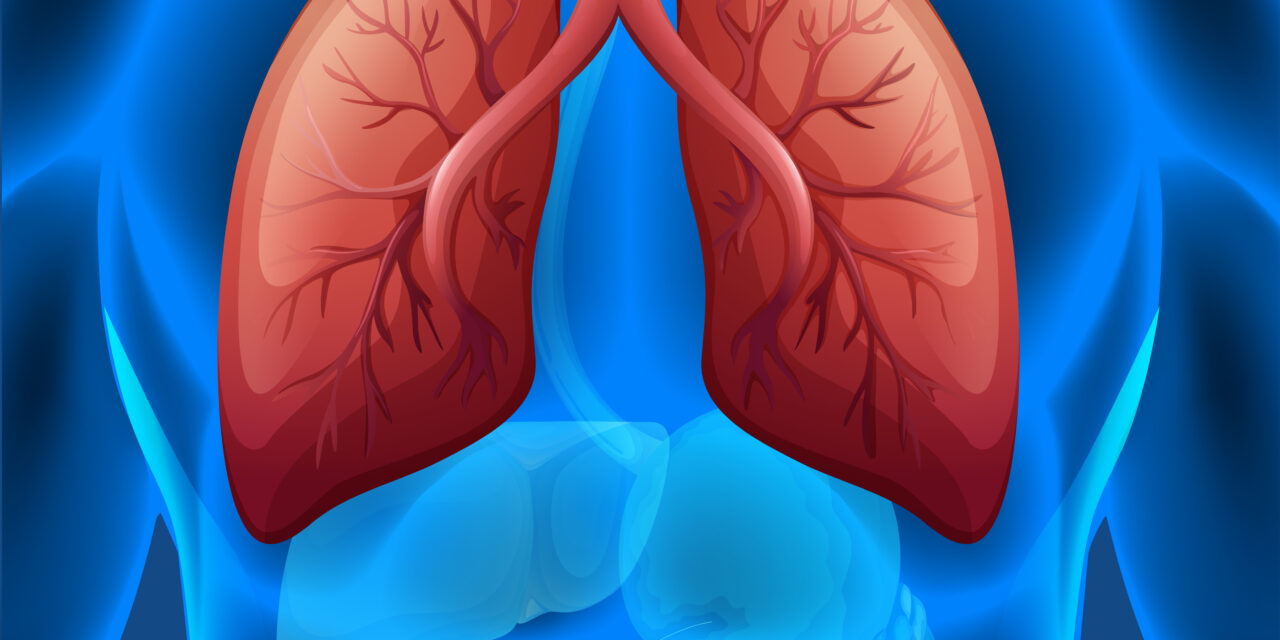 Combinația pembrolizumab – chimioterapie standard dublează supraviețuirea globală la 4 ani pentru pacienții cu cancer pulmonar non-microcelular metastatic, în linia I de tratament