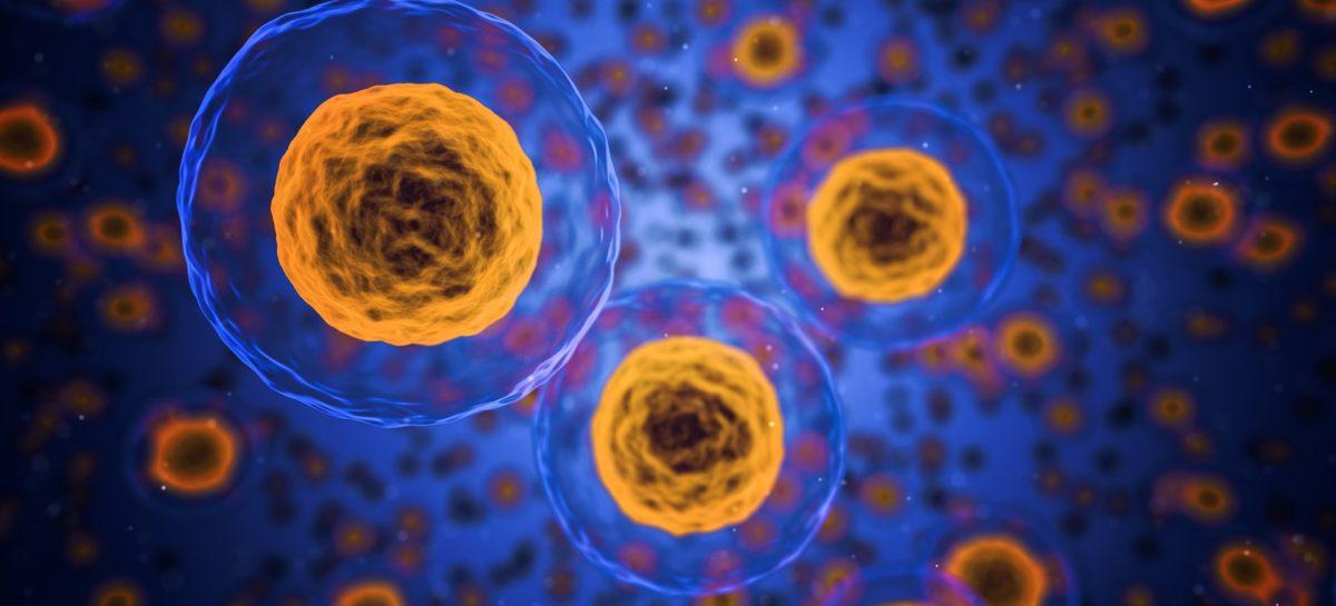 Ministerul Sănătății a înființat o comisie de terapii celulare