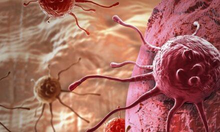 Epigenomica, o nouă dimensiune a oncologiei de precizie. Care sunt factorii care influențează expresia genelor și ce rol au în apariția cancerului?