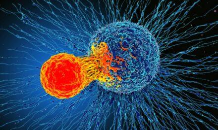 TMB-H se corelează cu răspunsul la imunoterapia cu inhibitori ai punctelor de control doar pentru anumite tipuri de tumori solide