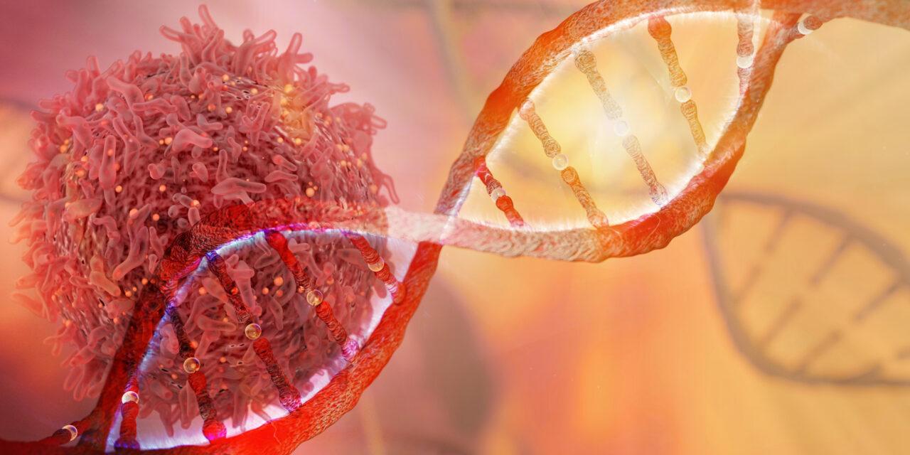 Neoantigenele P53 și RAS ar putea fi pentru prima dată țintite terapeutic printr-un nou tip de imunoterapie bazată pe anticorpi bispecifici