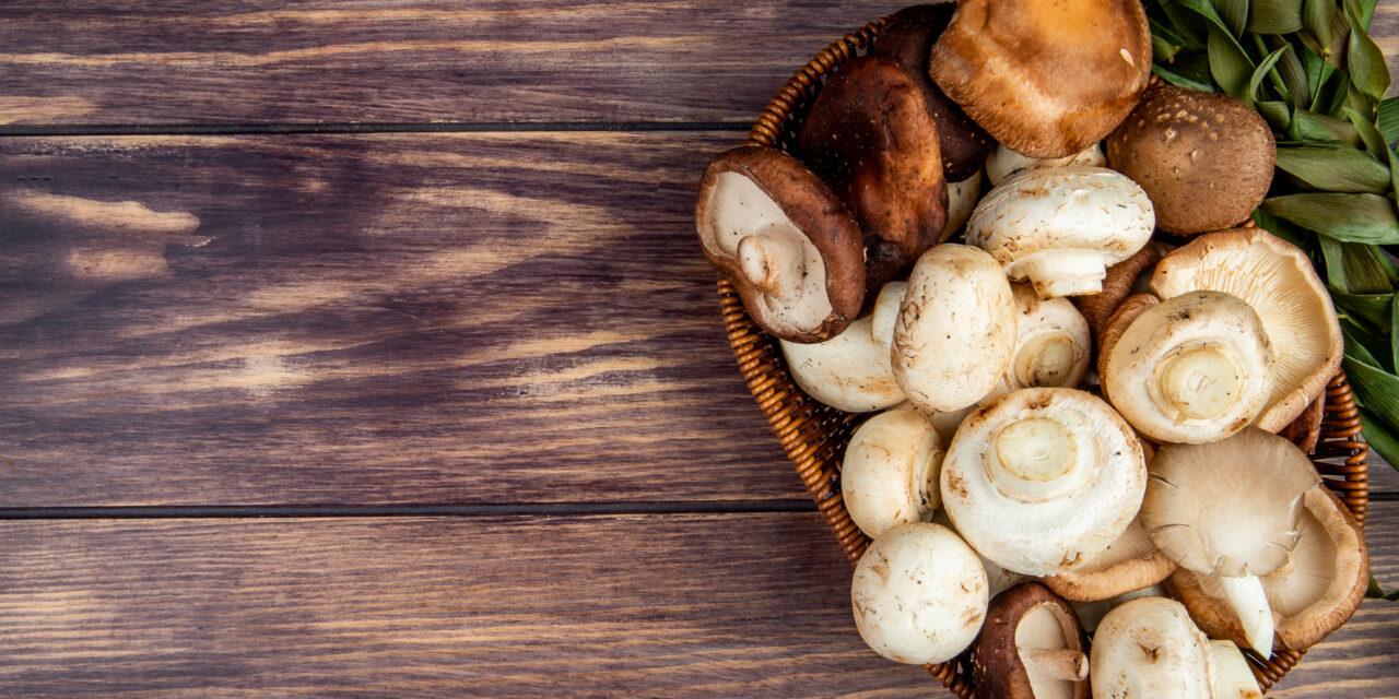 Consumul de ciuperci ar putea reduce semnificativ riscul de cancer