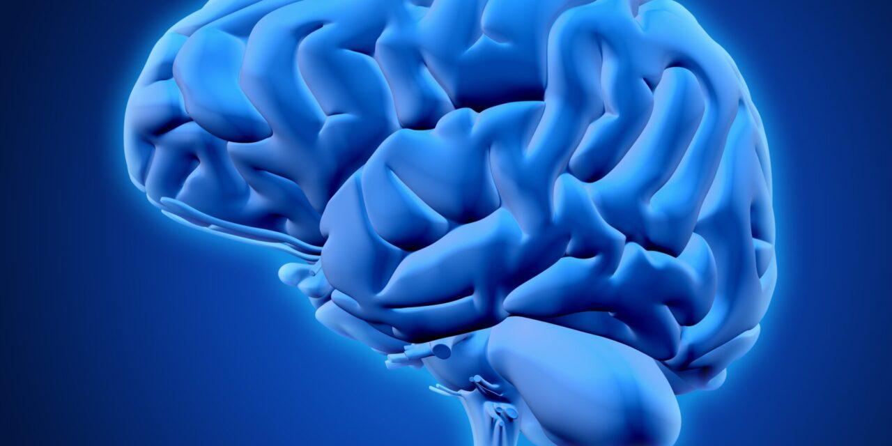 Structurile descoperite la pacienții cu cancer cerebral ar putea ajuta la combaterea tumorilor