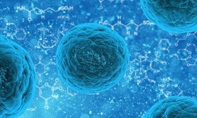 O platformă inovatoare de testare ar putea permite imunoterapii mai precise și personalizate