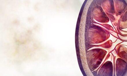 Cercetătorii au identificat originile a șapte tipuri rare de cancer renal