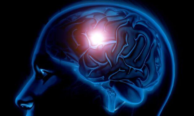 Cercetătorii au găsit o metodă de a analiza celulele bolnave și cele sănătoase de la pacienții cu tumori cerebrale
